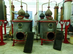 Tsantali's ouzo production facilities