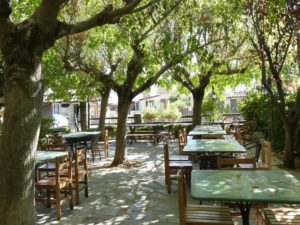 The outdoor patiio under the tree canopy at Oikoperiigitis in Kerkini
